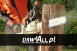 Drwall – Profesjonalna chirurgia drzew na Śląsku